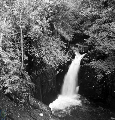 Pecca Falls, Hollybush Spout